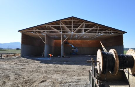 Boviteq West Barn Build 39